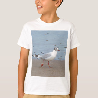 Blach headed gull T-Shirt
