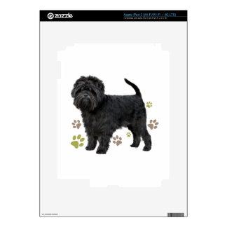Black Affenpinscher Dog iPad 3 Skin