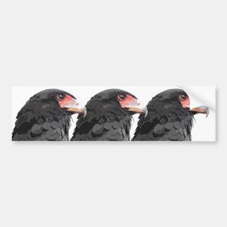 Black African Bateleur Eagle Bumper Sticker