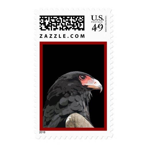 Black African Bateleur Eagle Postage Stamps