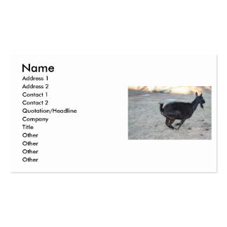 Black alpine goat doe running away to right business card