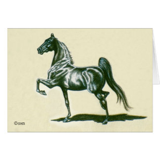 Black American Saddlebred Horse Note Card