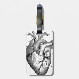 Black Anatomical Heart Bag Tag