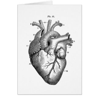 Black Anatomical Heart Card