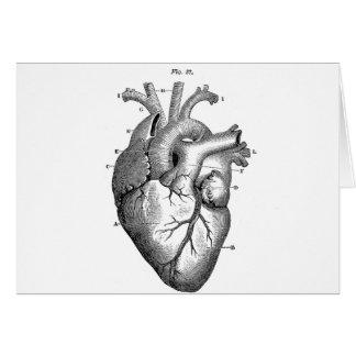 Black Anatomical Heart Card