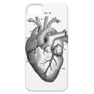 Black Anatomical Heart iPhone 5 Cases