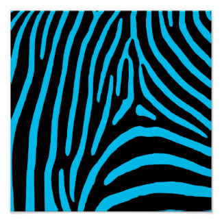 Black and Aqua Zebra Stripes Poster