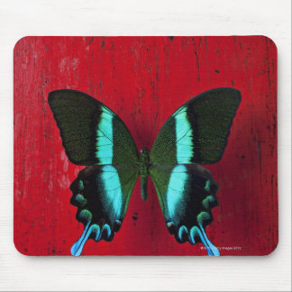Black and blue butterfly on red wall mouse pad