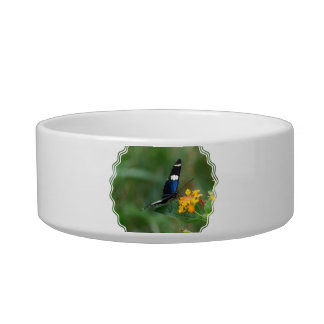 Black and Blue Butterfly Pet Water Bowl