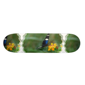 Black and Blue Butterfly Skateboard