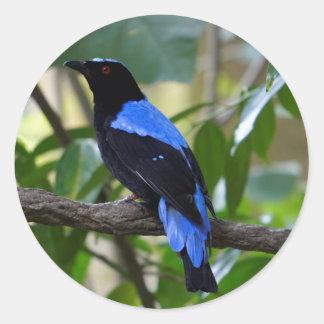 Black And Blue Classic Round Sticker