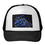 Black and blue invert of Florida wildflowers Hat