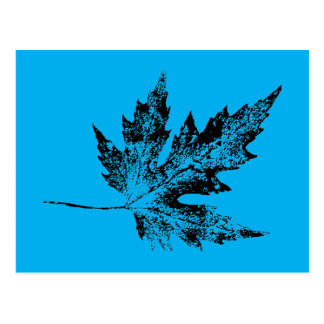 """""""Black and Blue Maple"""" Country Roads Postcard"""