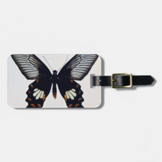 Black and brown butterfly luggage tag