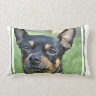Black and Brown Chihuahua Lumbar Pillow