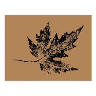"""""""Black and Brown Maple"""" Country Roads Postcard"""