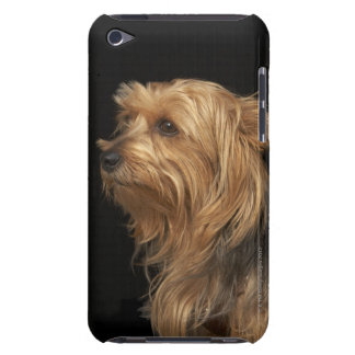 Black and brown Yorkie left profile on black Barely There iPod Case