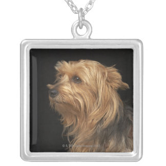 Black and brown Yorkie left profile on black Personalized Necklace