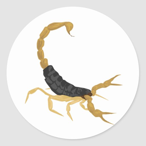 Black and Gold Scorpion Classic Round Sticker