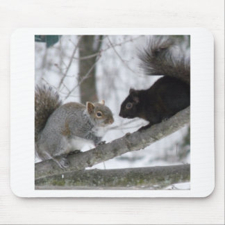 Black and Gray Squirrel Mouse Pad