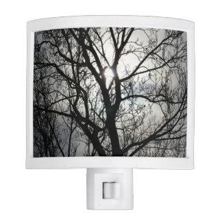 Black and Gray Tree Night Light