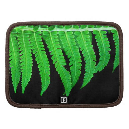 Black and Green Fern Folio Planners