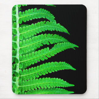 Black and Green Fern Mouse Pad