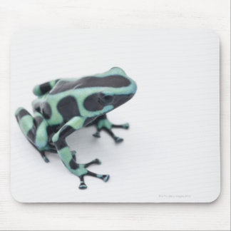 black and green poison dart frog (dendrobates mouse pad