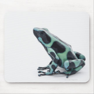 Black and Green Poison Dart Frog Mouse Pad