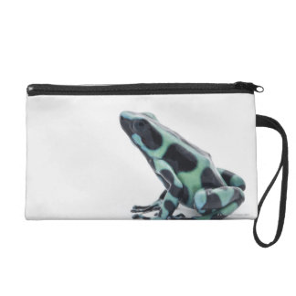 Black and Green Poison Dart Frog Wristlet Purse