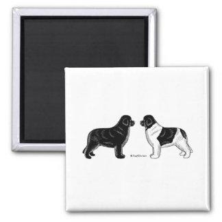 Black and Landseer Newfoundland Dogs 2 Inch Square Magnet