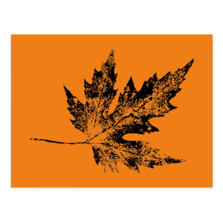 """""""Black and Orange Maple"""" Country Roads Postcard"""