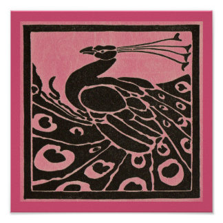 BLACK AND PINK PEACOCK POSTER