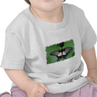 Black and Pink Swallowtail Butterfly Baby T-Shirt