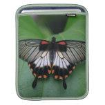 Black and Pink Swallowtail iPad Sleeve
