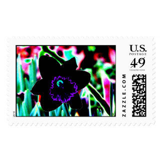 Black and Purple Daffodil Postage Stamps