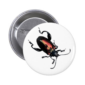 Black and Red Beetle bug Pins