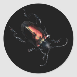 Black and Red Beetle bug Classic Round Sticker