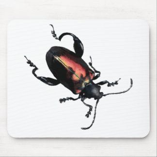 Black and Red Beetle bug Mouse Pad