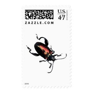 Black and Red Beetle bug Postage