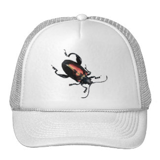 Black and Red Beetle bug Trucker Hat