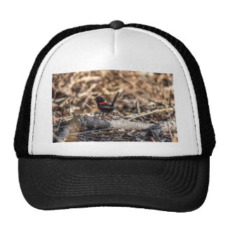 BLACK AND RED FINCH AUSTRALIA WITH ART EFFECTS TRUCKER HAT
