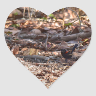 BLACK AND RED FINCH IN RURAL QUEENSLAND AUSTRALIA HEART STICKER
