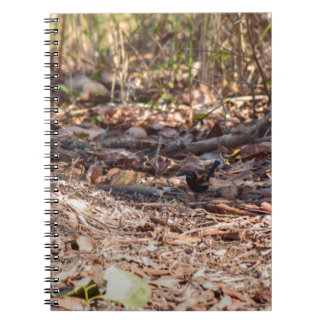 BLACK AND RED FINCH IN RURAL QUEENSLAND AUSTRALIA NOTEBOOK