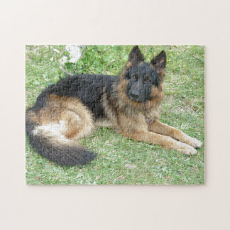 Black and Tan Alsatian Jigsaw Puzzle