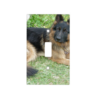 Black and Tan Alsatian Light Switch Cover
