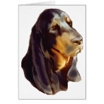 black and tan coon Hound Card