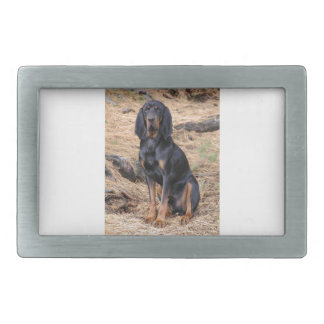 Black and Tan Coonhound Dog Belt Buckle