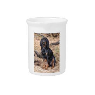 Black and Tan Coonhound Dog Drink Pitcher