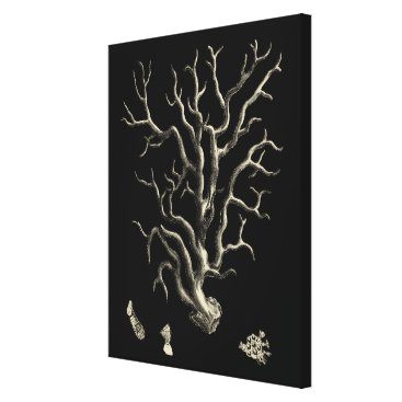 Beach Themed Black and Tan Coral Canvas Print